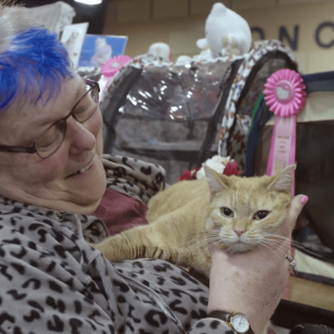 a woman with a blue streak of hair smiles at a rather unamused orange tabby cat she's holding